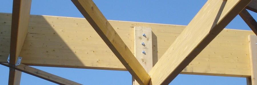 ing nierie de la construction bois